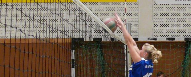 volleyball_szene_news