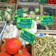 Obst, Gemüse, Käse und Wurst. Für den Einkauf des täglichen […]