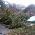 Gestern Abend war der Löschzug Isselburg aufgrund des Unwetters im Einsatz, um Gefahrenstellen zu beseitigen. So wurden umgestürzte Bäume von den Straßen und heruntergefallene Dachziegel […]