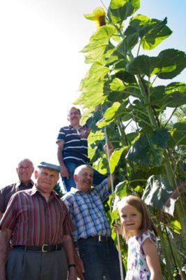 Von links: Wolfgang Westerfeld, Konrad Opitz, Reinholt Pries (vorne) Jürgen Metheling (hinten), Charlotte Schmitz