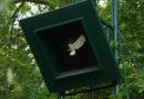 Sabotage an der Anholter Vogelstange
