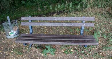FDP stellt Sitzbänke auf den Prüfstand