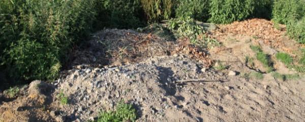 Restmüll,  Biomüll und Bauschutt wurden an der Danziger Straße illegal entsorgt