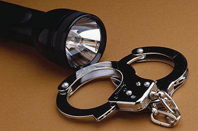 Einbrecher flüchten ohne Beute