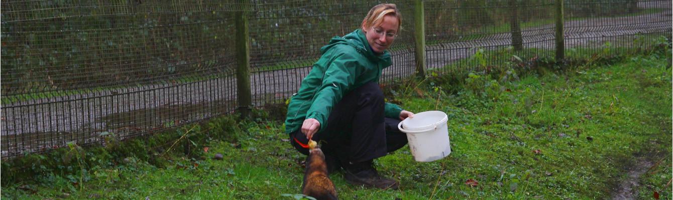 Tierpflegerin Sandra Kühn bei der Arbeit