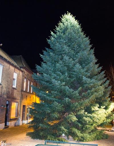 Acht Meter vom Boden bis zur Spitze misst Isselburg´s Weihnachtsbaum