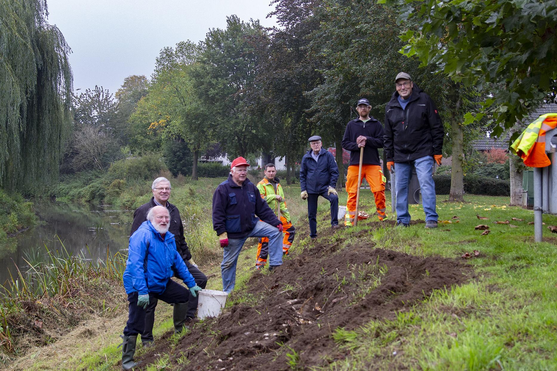 Isselburger Heimatkreis pflanzt mehr als 1000 Osterglocken