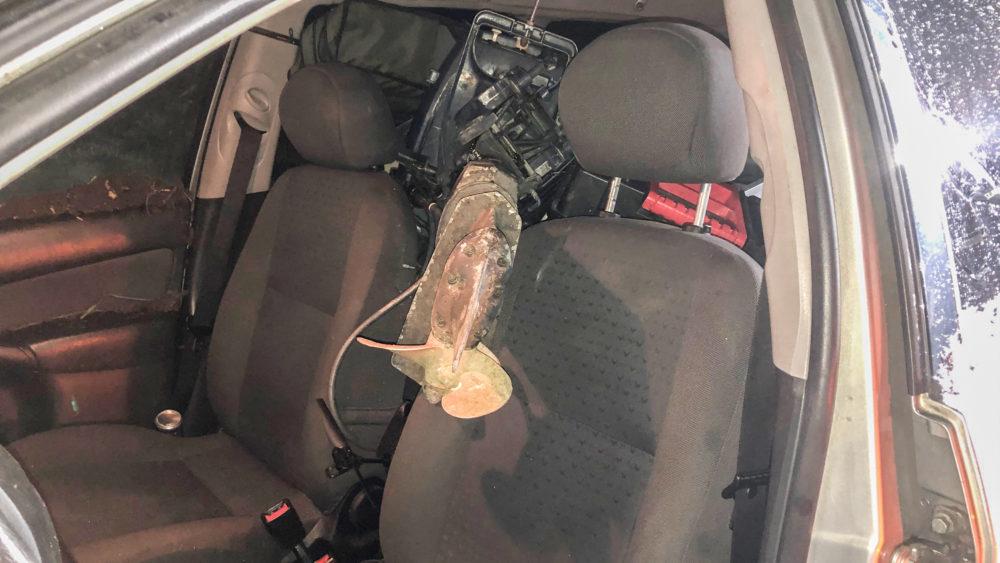 Kein Führerschein - Drogen im Blut - unversteuertes Auto - Diebstahl